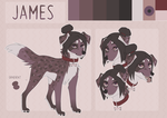 James reference sheet by SleepyCatMeow
