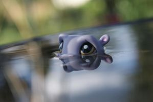 LPS Hippo by Eli102