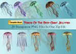 Giant Jellyfish PNG Stock Pack by Roy3D