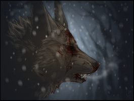 Shiver by Anuwolf