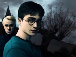 Drarry Half blood Prince2 by Dhesia
