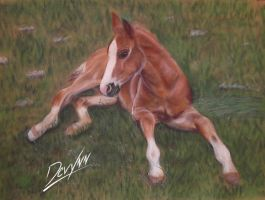 Flash - Pastel by Devynn