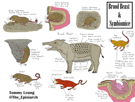 Brood Beast and Symbiomice by The-Episiarch