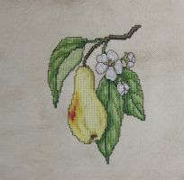 The Glorious Pear by Mattsma