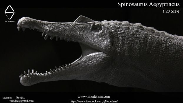 Spinosaurus 1:20 resin kits pic8 by TumTist