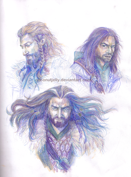 Heirs of Durin by coconutjelly by CoconutJelly