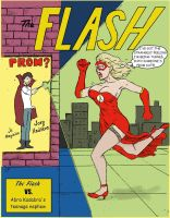 My Modification of a Flash Cover by darkspectralgoat