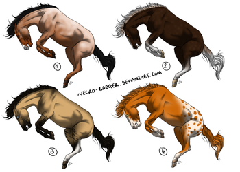 Natural Horse Adopts 4/4 OPEN by necro-badger