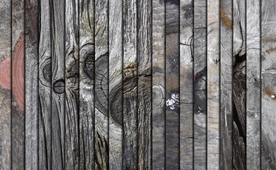 Knotholes In Wood Texture Pack by sdwhaven