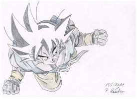 Goku Flying by Vegetto90