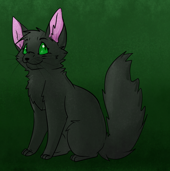 Hollyleaf by Lustrous-Dreams