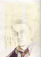 Harry Potter collage wip 1 by Mimitchki