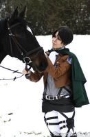 I guess Rivaille likes horses more than people by KamiSachiko