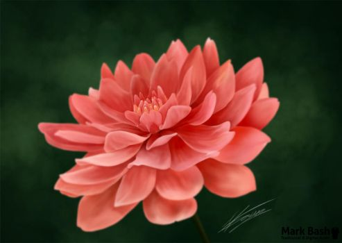 Spring Flower by Mark-Bash