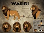 Wasiri ref sheet 2014 by AnsticeWolf