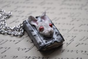 White Rabbit's Lost Journal by songinthesnow