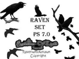 Raven Set 7.0 by Insan-Stock