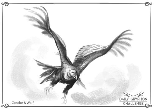 Gryphon Challenge 16 : Condor and Wolf by Pechschwinge