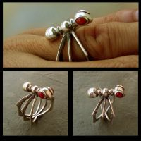 ant ring by morpho2012