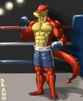 he is Drago by koreanhusky
