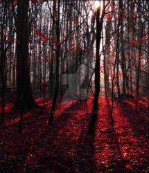 Trees ~ Red Autumn Forest 2 ~ AStoKo STOCK by AStoKo