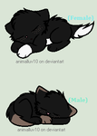Free Adoptables #7 BrownXNight (Open) by Oak-Storm