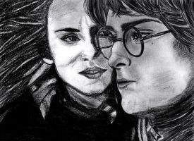 Harry and Hermione by TheAugustJayhawker