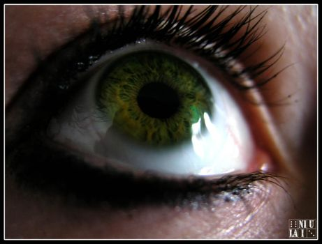 Eye by Sciacca-Sciacca