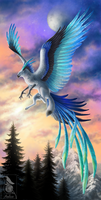 Wings of Ice by Araless