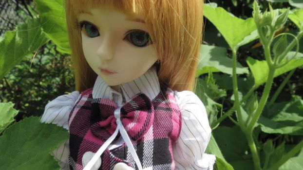Mina BJD by apple-lover-lives