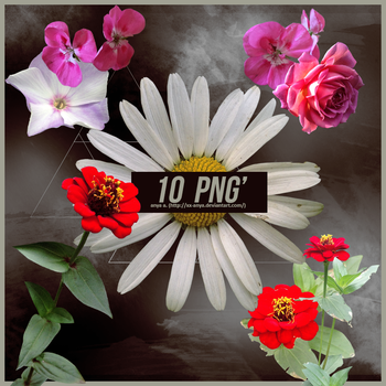 10 PNG', Flowers by xx-Anya