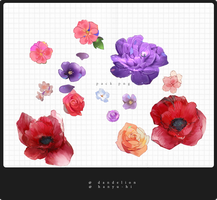 Pack Flowers1 13 Png by Hanyu-Hi