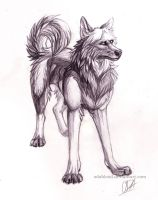 Traditional art by odablood