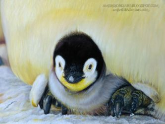 Penguin chick by AmBr0