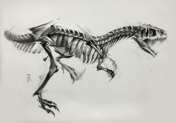 Allosaurus 2017 by MinohKim