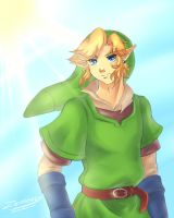 Skyward Sword: Link by Zelbunnii
