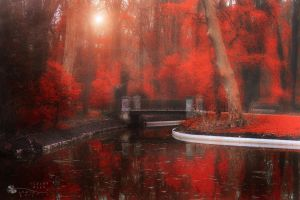 out of time... by ildiko-neer