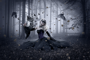 Butterflies and Ravens by Whendell
