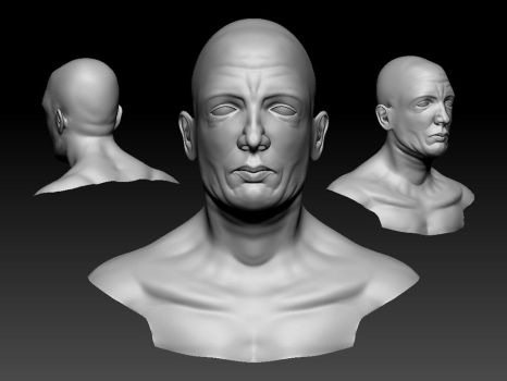 detailed head W.I.P. by Ahmed-Taher