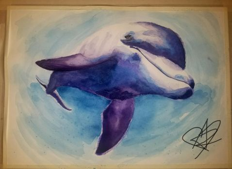 Dolphin by Audrey-Zombie