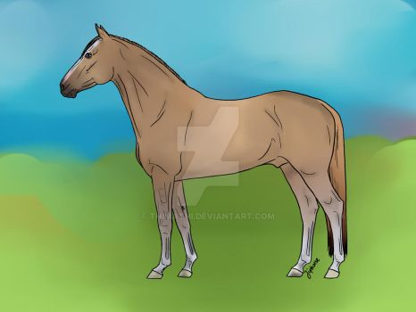 Ahokan - Adopted Horse OC by Thimathi