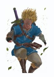 BotW: Link - 10.mar.2018 by LutherTaylor