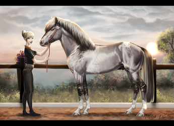 Aslo' and Katrina - Halter entry by BH-Stables