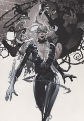 Black Cat and Spidey by ChristopherStevens
