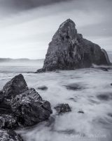 Lion Rock by slayer-of-moments