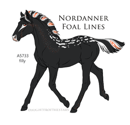 A5733 Nordanner foal Expired by EsaArts