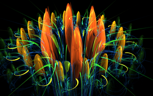 big coloured flower by Andrea1981G