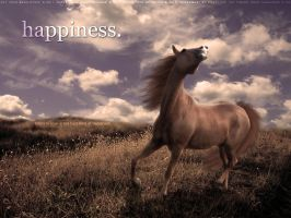 Happiness by filly1