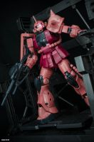 Char, heading out! by xIGetUm