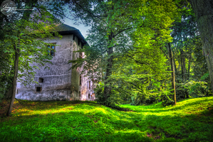the House in Woods. by oro-elui